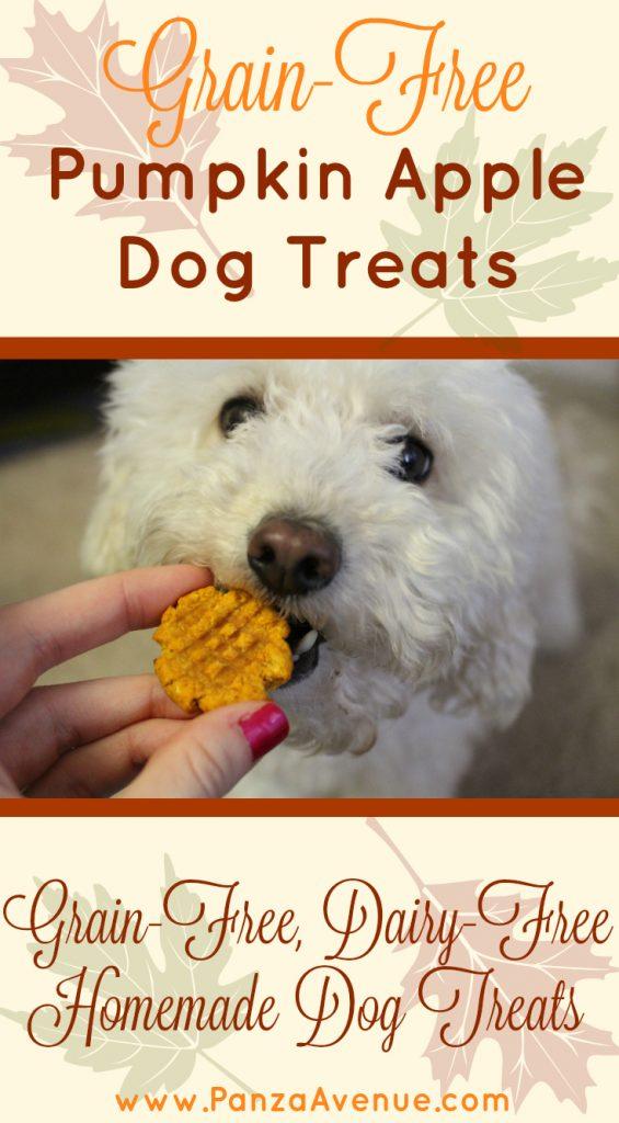 grain-free-pumpkin-apple-dog-treats