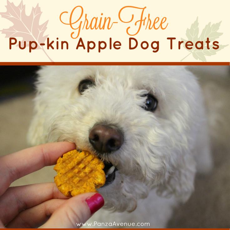 natural pumpkin dog treats panzaavenue.com